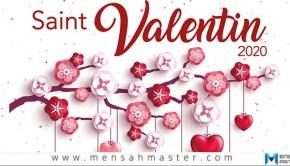 Saint-Valentin-3-applis-pour-lui-dire-Je-t'aime
