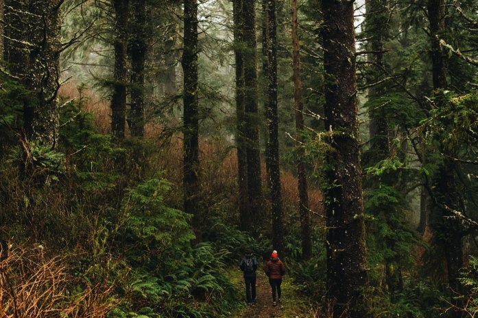 Two Rivers Nature Trail at Nestucca Bay National Wildlife Refuge