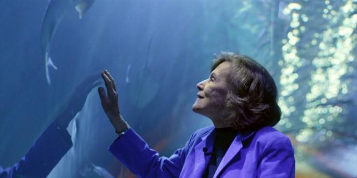 Sylvia Earle marine biologist