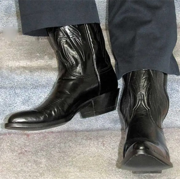 Image result for cowboy boots with suit