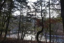 South Korea Woljeongsa Temple Pyeongchnag Winter Olympics 2018 menStyleFashion (6)