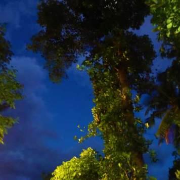 Earl's Regency Hotel - Kandy Jungle gardens MenStyleFashion 2017 sri Lanka (1)