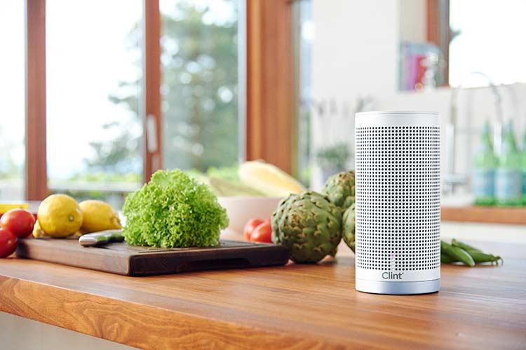 Wireless Speakers - Clint Audio Freya 2 Reviewed