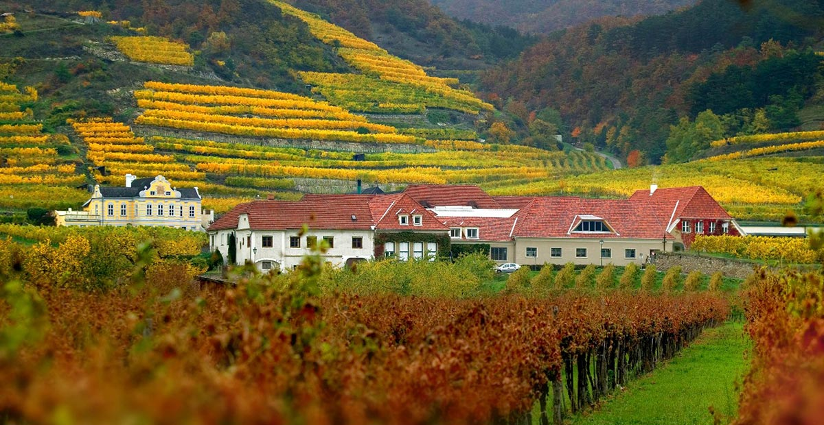 Austria – Cultivating Austria's Terroir Tourists