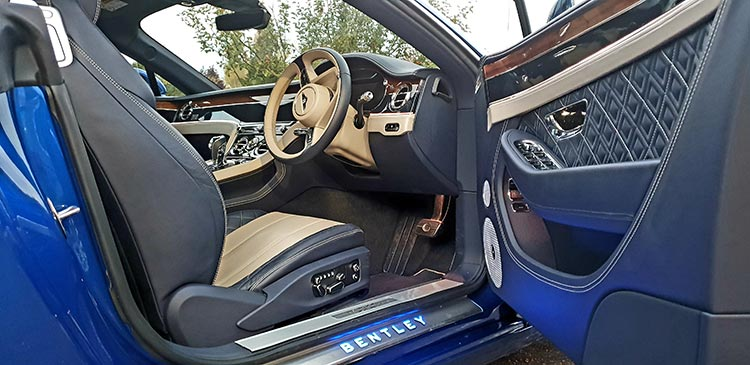 Bentley GT Continental Grand Tourer Leather Hide