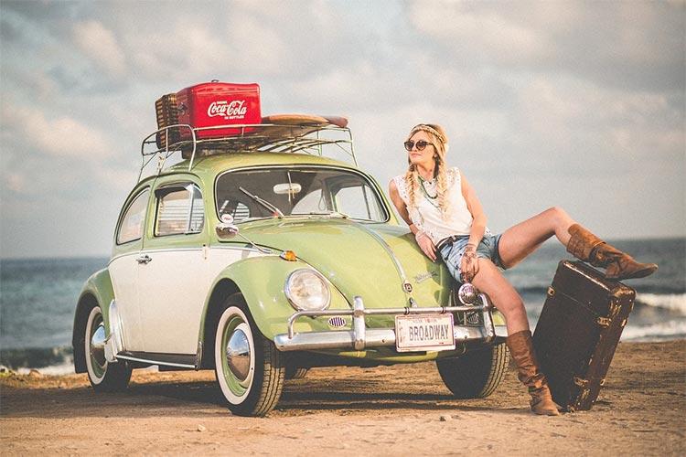car beetle