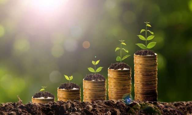 5 Investment Vehicles to Help Your Money Grow