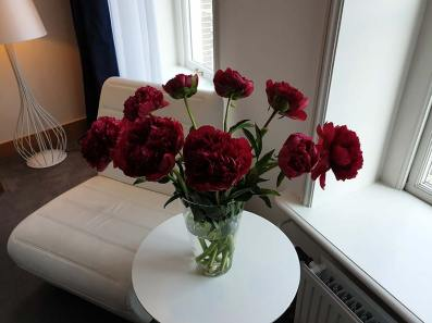 Radisson Blu Amsterdam Premium Room Canal View