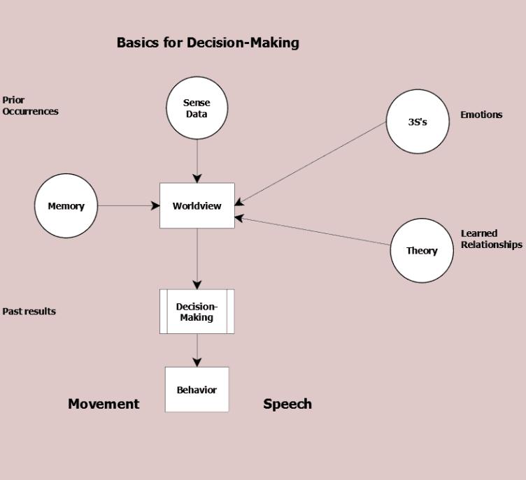 Figure 14.2 Basics for adult decision-making
