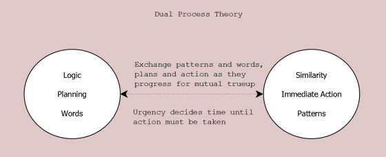 Dual Process Theory. Logic and Similarity processing info at same time in different manners for different goals. Logic using words for planning; Similarity for immediate action using patterns