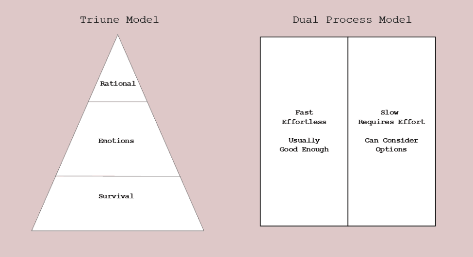 The triune mind and the dual process model