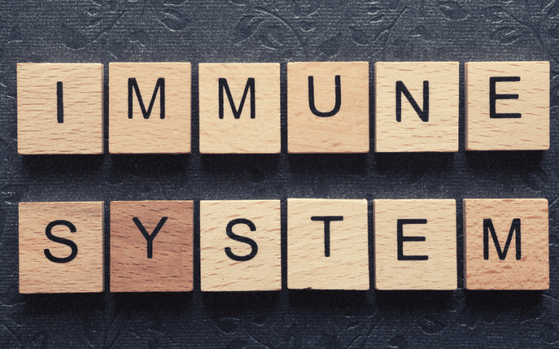 how to boost your immune system naturally feature image