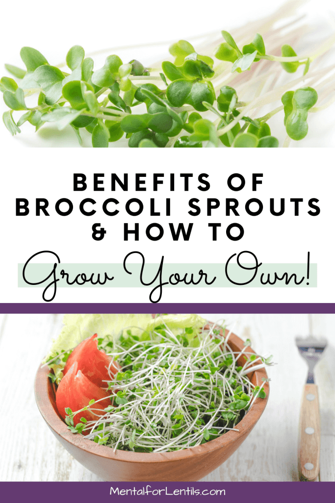 broccoli sprouts pin image