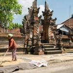 Und das ist dann der letzte Schritt: der Reis aus den Säcken muss getrocknet werden. Das passiert einfach vor der Haustür. Vorm Tempel. An der Straße.