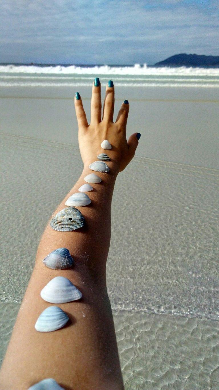 conchas sobre la mano en la playa