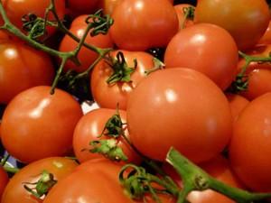 tomaten1000