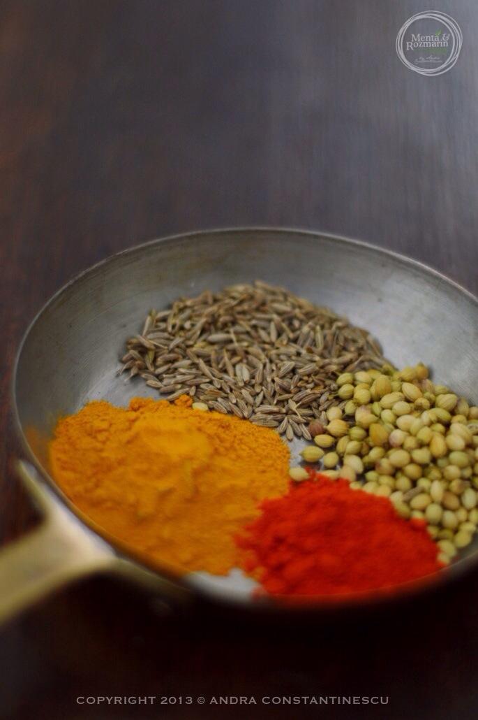 condimente-curry