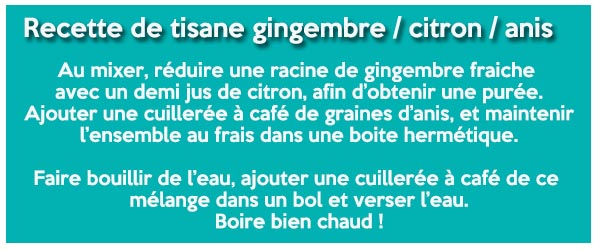 Recette tisane gingembre citron anis 600 x 250