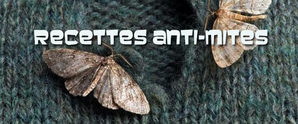 Les solutions naturelles anti-mites