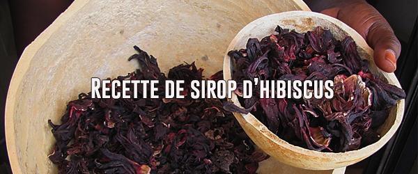Recette de sirop et de tisane d'hibiscus