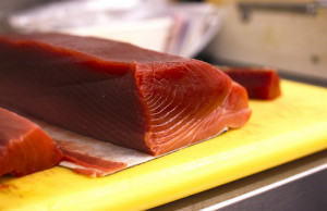 Bluefin tuna. Photo by InvernoDreaming.