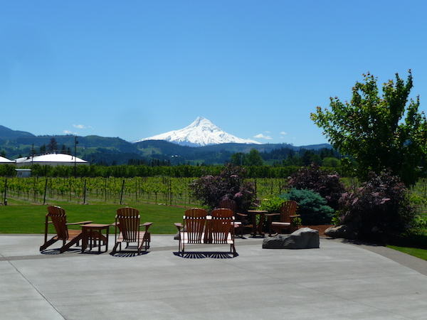 The view from Mt. Hood Winery