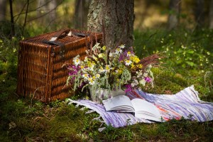 Five Non Fiction Books To Read This Summer