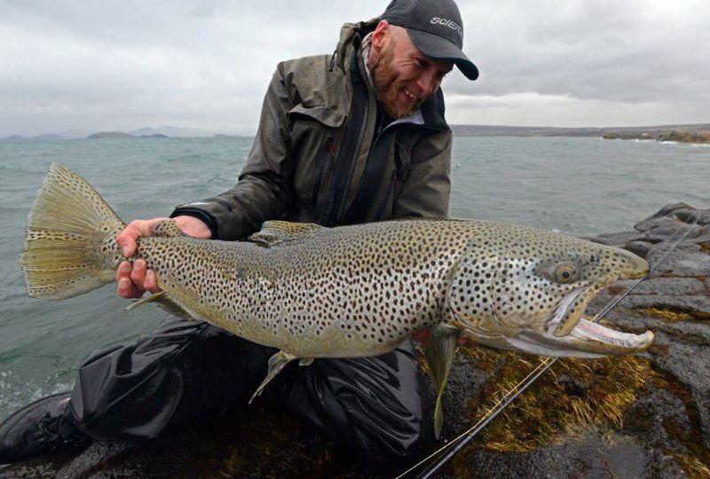 Pescar en Islandia truchas gigantes