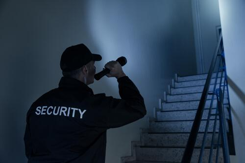 Beveiliging-in-Lelystad