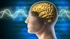 beyin ve ses