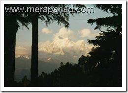 trisul  peak from gwaldam
