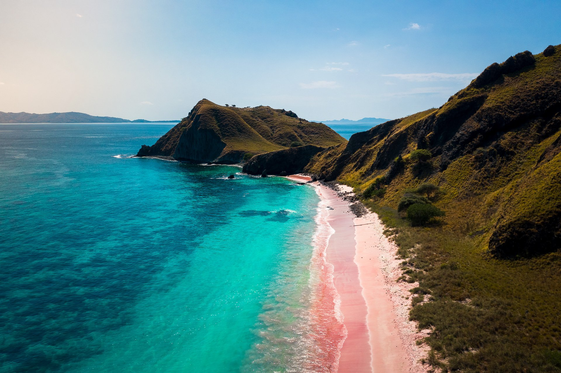 Beachgoers are warned to keep some distance from these venomous animals whose stings still pack a punch long after they've died. All Pink Beach Info Private Indonesia Roundtrips Merapi Tour Travel