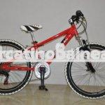 Mountain Bike Bambino - Bicicletta Professionale Personalizzata