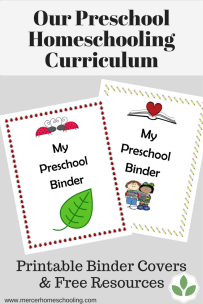 Our Preschool Homeschooling Curriculum