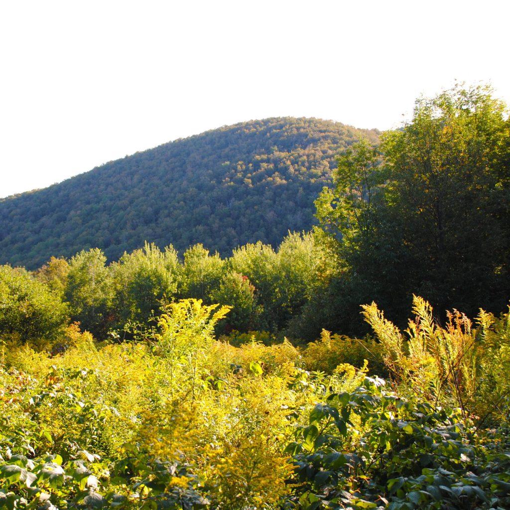 mountain vermont