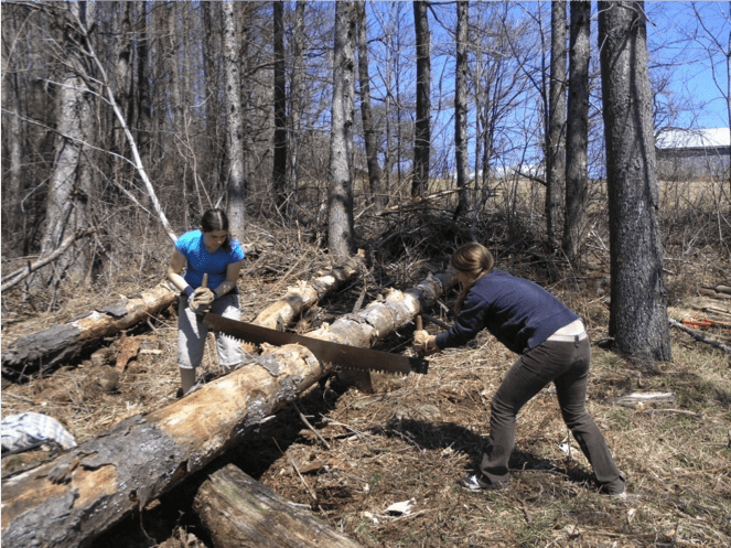volunteers logging