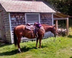 horse cabin rental vermont