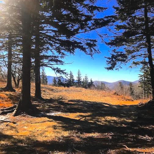 hiking spots VT