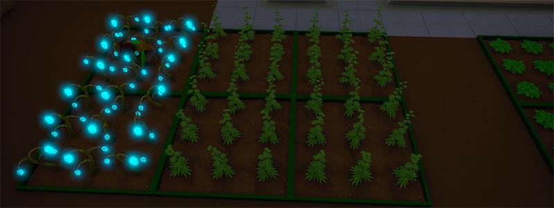 Updated Crops