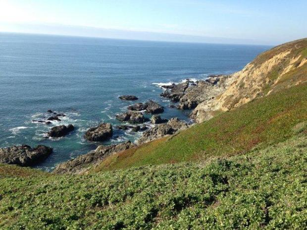 Whale watchers, fishermen, beach buffs and outdoor enthusiasts flock toBodega Head, where hiking trails traverse the bluffs and picnic tablesawait.Photo credit: Jackie Burrell/Staff