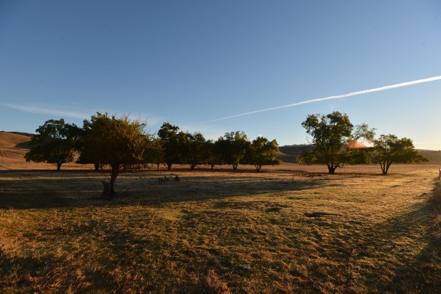 Contra Costa County to decide whether to allow 125 houses in area designated open space 2