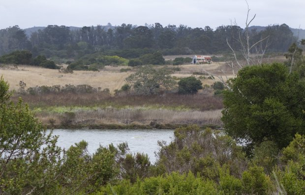 Elkhorn Slough offers miles of meandering trails that take you through mudflats and woodlands to satisfying vantage points overlooking its interconnected waterways, inlets and coves. (Photo courtesy of Alice Bourget)