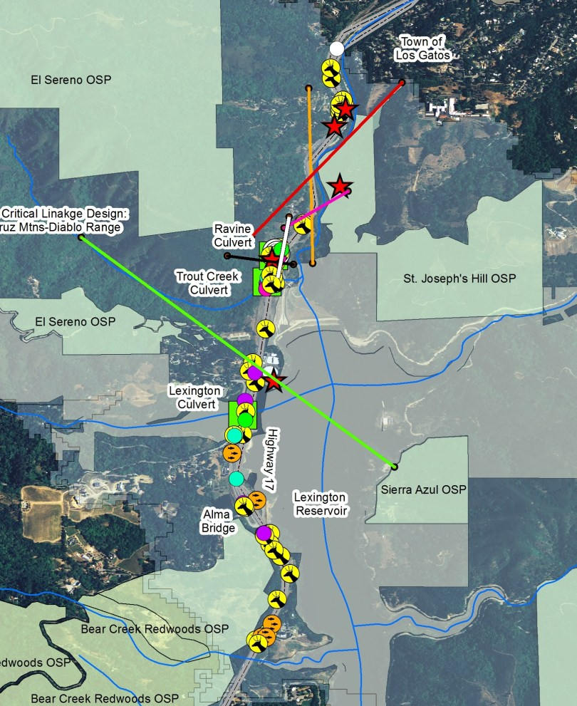 A map of Highway 17 through Santa Clara County shows the many animals killed along the route. It was created by Pathways For Wildlife, using 2007-2015 data provided by Caltrans, the UCSC Puma Project and Pathways for Wildlife.