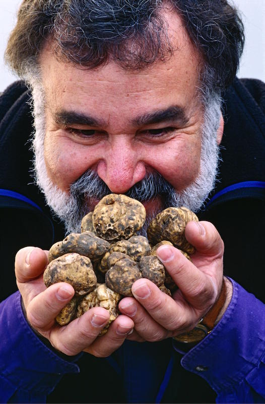blog-oliveto-truffles
