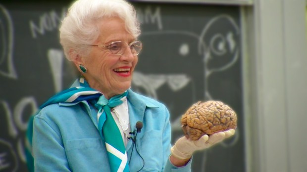 """LUNA PRODUCTIONSPopular UC Berkeley professor Dr. Marian Diamond appears in a scene from the documentary """"My Love Affair With the Brain: The Life and Science of Dr. Marian Diamond,"""" which screens at the Mill Valley Film Festival."""