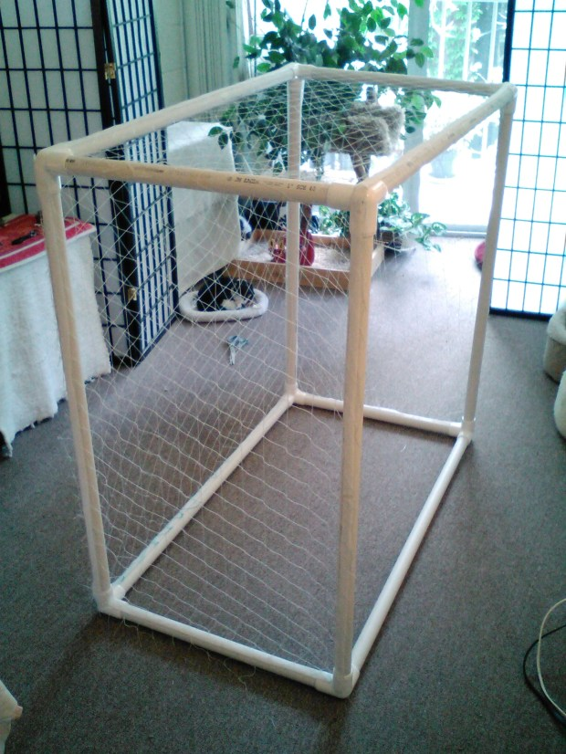Homemade catio. (Courtesy of Colette)