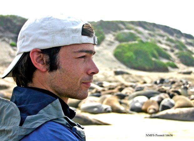 "Patrick Robinson, director of Año Nuevo Island Reserve, was taken in 2012 while he was working at Año Nuevo with UC Santa Cruz undergraduates on elephant seal research. Photo to accompany sjm-superseals-1229. Photo credit: ""Courtesy of Año Nuevo Island Reserve"""