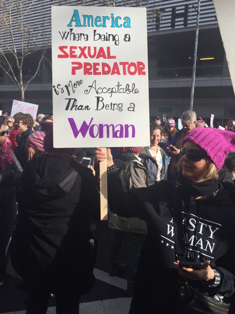 Image result for women's march banners signs