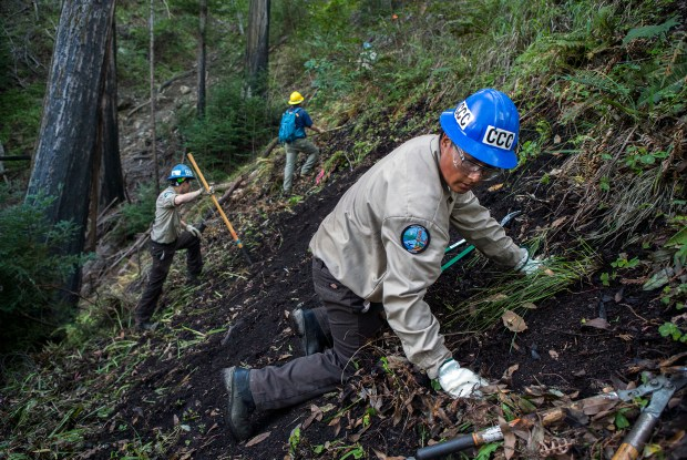 Civilian Conservation Corps member Angel Correa work on clearing brush from the proposed Pfeiffer Canyon Trail in Big Sur, Calif. on Wednesday, March, 8, 2017. The trail would link the south and north of Big Sur so residents can have access to either side of the Pfeiffer Canyon Bridge on Highway 1, which has been closed and condemned due to damage from recent storms. (LiPo Ching/Bay Area News Group)