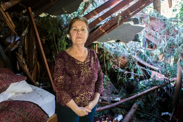 Deetjen's Big Sur Inn General Manager Doris Jolicoeur poses for a portrait in the damaged Stokes House in Big Sur, Calif. on Wednesday, March, 8, 2017. Redwood trees fell on the cabin due to the recent storms. (LiPo Ching/Bay Area News Group)